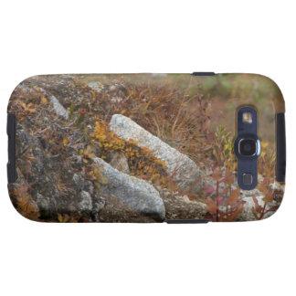 Ladera de Hermosa Samsung Galaxy S3 Funda