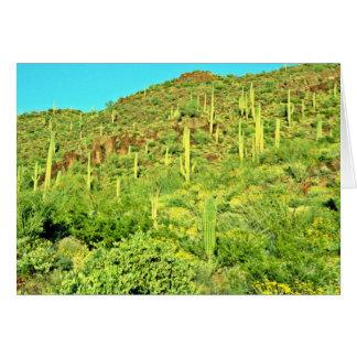 Ladera del Saguaro, plantas, rocas rojas Tarjeta