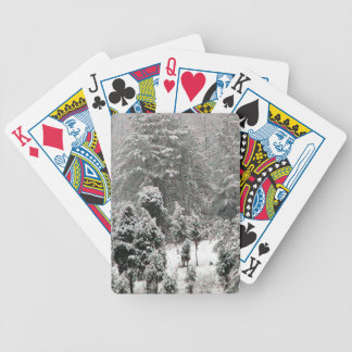 Ladera nevada baraja cartas de poker