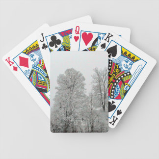 Ladera Nevado Baraja Cartas De Poker