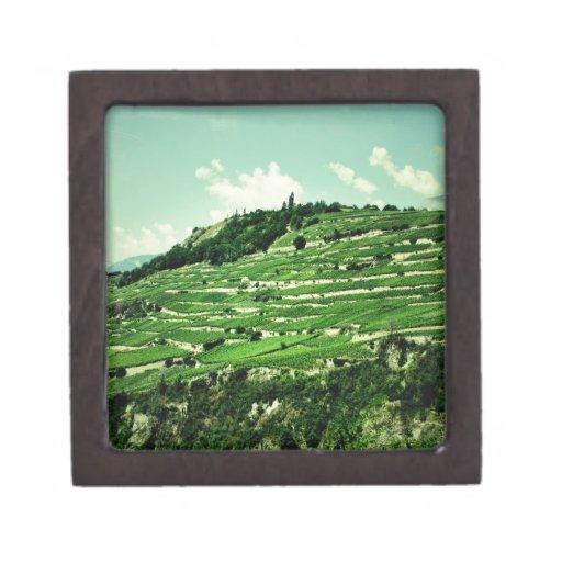 Laderas suizas caja de recuerdo de calidad