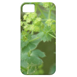 Ladies Mantle iPhone 5 Cover