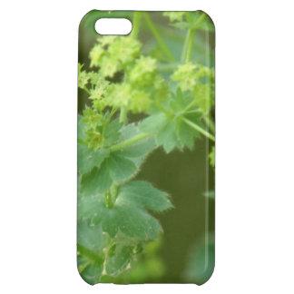 Ladies Mantle iPhone 5C Covers