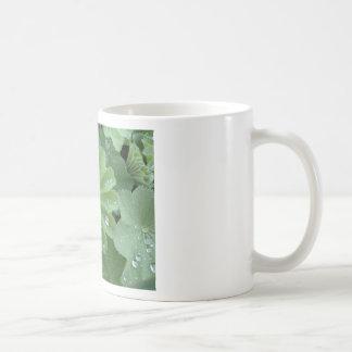 Ladies Mantle Mug