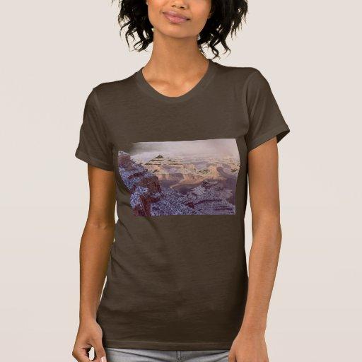 Ladies T / Grand Canyon Winter T Shirt