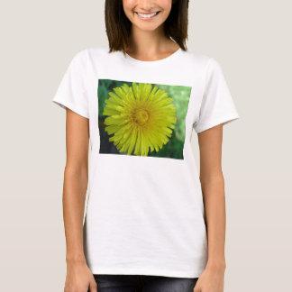 Ladies T-Shirt - Dandelion