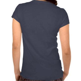 Ladies V neck t shirt (pick your colour)