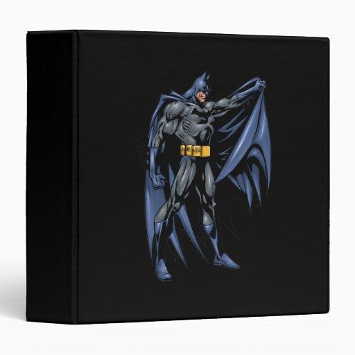Lado a todo color de Batman