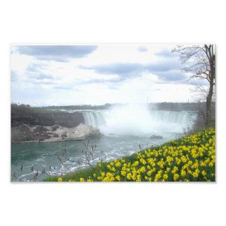 Lado del canadiense de Niagara Falls Fotografías
