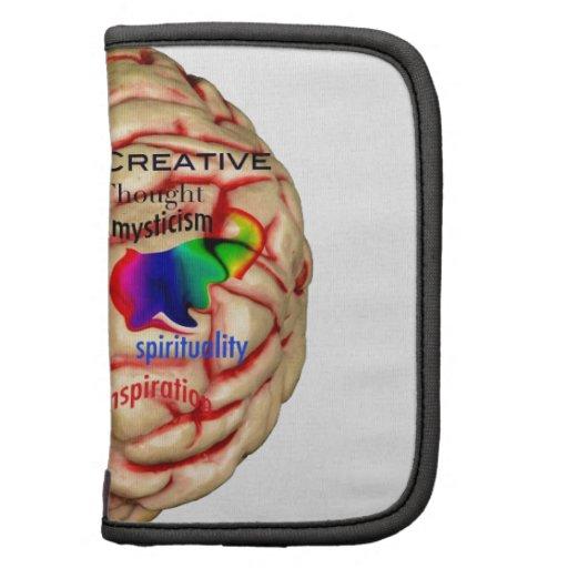Lado izquierdo y derecho del cerebro planificadores