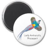Lady Amherst Pheasant Round Magnet