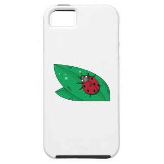 Lady Beetle iPhone 5/5S Cases
