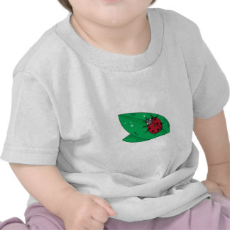 Lady Beetle Shirt