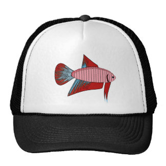 Lady Betta - Veiltail Trucker Hat