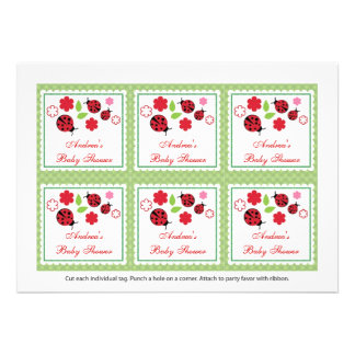 Lady Bug Baby Shower Favor Tags Card