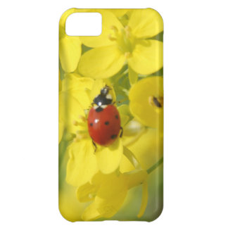 Lady Bug Case For iPhone 5C