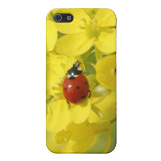 Lady Bug Covers For iPhone 5