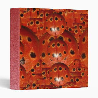 LADY Bug Design n Concept by Naveen 3 Ring Binder