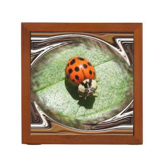 Lady Bug ~ Desk Organizer