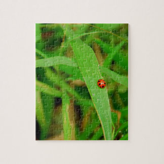 Lady Bug in Grass Jigsaw Puzzle