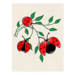 Lady Bug, Lady Bugs Fly Away Home Post Card