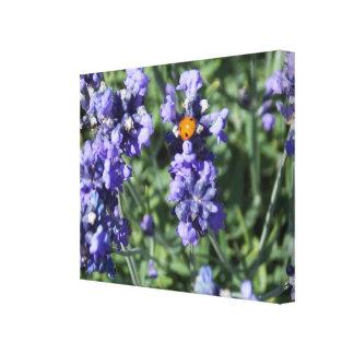 Lady Bug Lavender Canvas Print