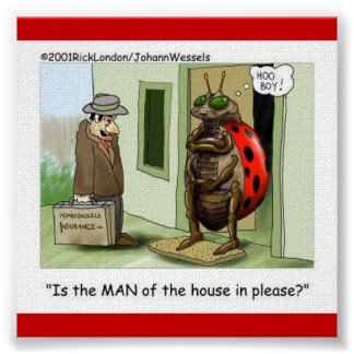 Lady Bug Meets Male Chauvinist Poster Poster