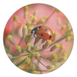 Lady Bug Melamine Plate