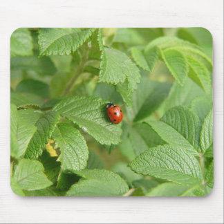 Lady Bug Mouse Pad