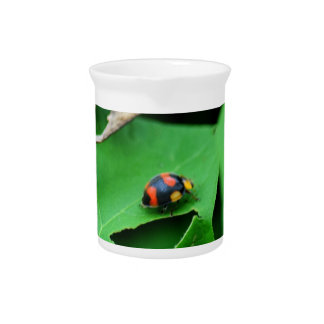 LADY BUG ON LEAF AUSTRALIA DRINK PITCHER