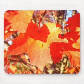 Lady Bug on Red Maple Leaf Mousepad