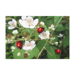 Lady bug on white berry blossoms canvas print art