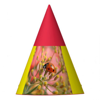 Lady Bug Party Hat