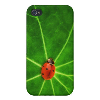 Lady Bug Print Iphone Case