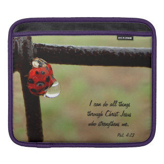 Lady BUG Rickshaw iPad Sleeve