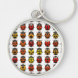 Lady Bugs 1 Keychain