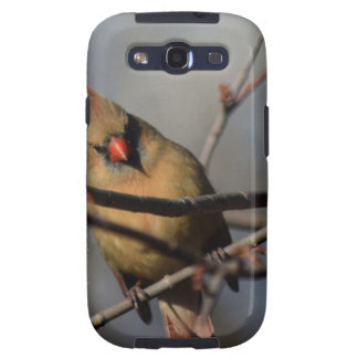 Lady Cardinal behind the limbs Galaxy SIII Covers