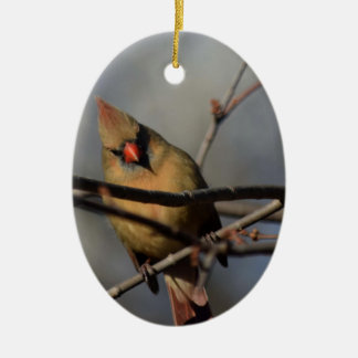 Lady Cardinal behind the limbs Ceramic Ornament