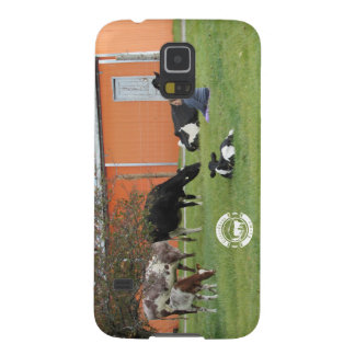 Lady & Cows Case