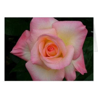 Lady Di Rose Greeting Cards