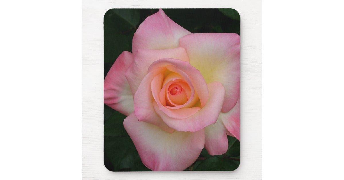 Lady Diana Rose Mouse Pad Zazzle
