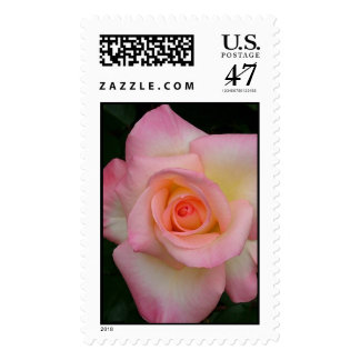 Lady Diana Rose Postage