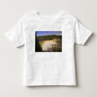 Lady Evelyn Falls Territorial Park, Northwest Toddler T-shirt