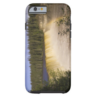Lady Evelyn Falls Territorial Park, Northwest Tough iPhone 6 Case