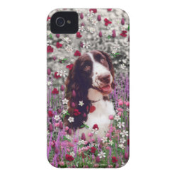 Case-Mate iPhone 4 Barely There Universal Case with Brittany Spaniel Phone Cases design