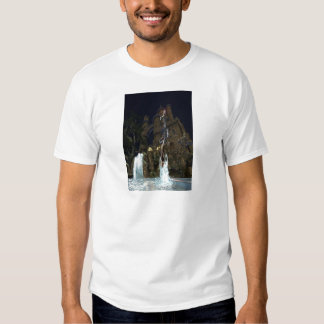 Lady In The Lake T-shirts