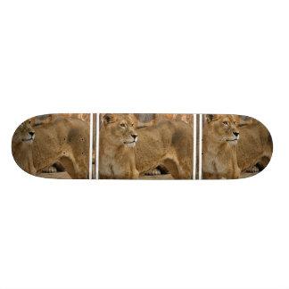 Lady Lioness Skateboard
