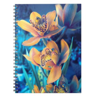 Lady of the Night Notebook