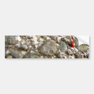 Lady on Stone Bumper Sticker