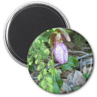 Lady Slipper 2 Fridge Magnet